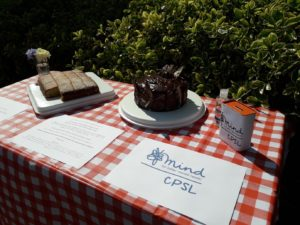 Cakes and a piece of paper with the CPSL Mind logo on it on a table with a red and white checked table cloth